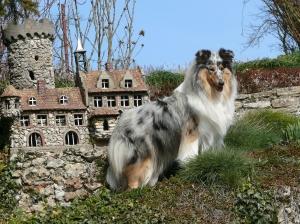 Ein Burgfräulein :-)