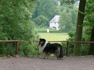 a-gartenhaus